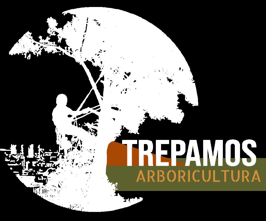 repamos Arboricultura trata enfermedades y plagas de los árboles