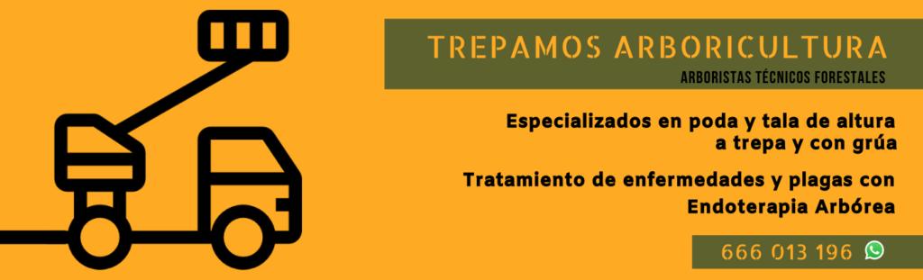banner publicitario Trepamos