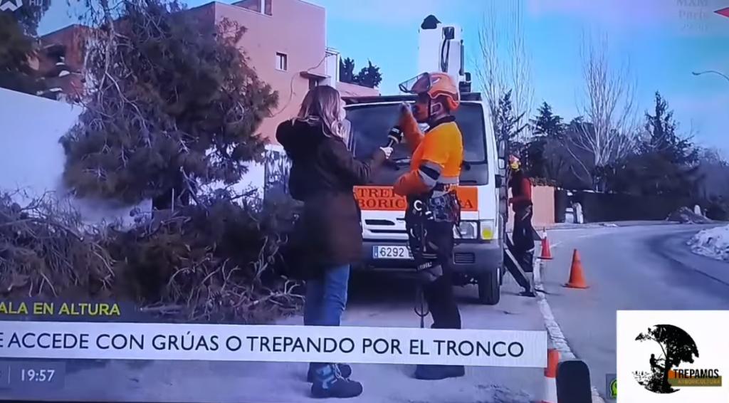 Telemadrid Madrid Directo Filomena